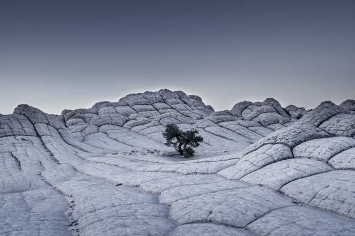 Grey Matter(s): Incredible and Mystical Nature Landscapes by Tom Jacobi