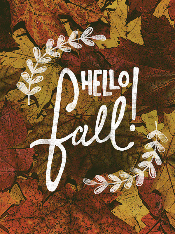 Hello Fall #lettering #leaf #fall #design #autumn #written #hand