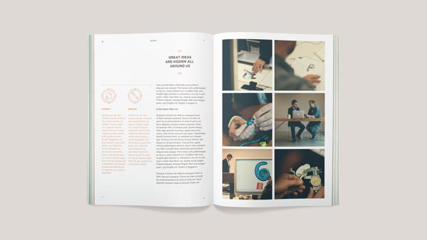 Acapo Visual Identity #layout