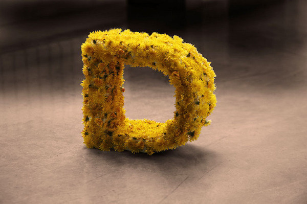 CRL #sculpture #yellow #letter #natural #three #logo #flowers #dimensional