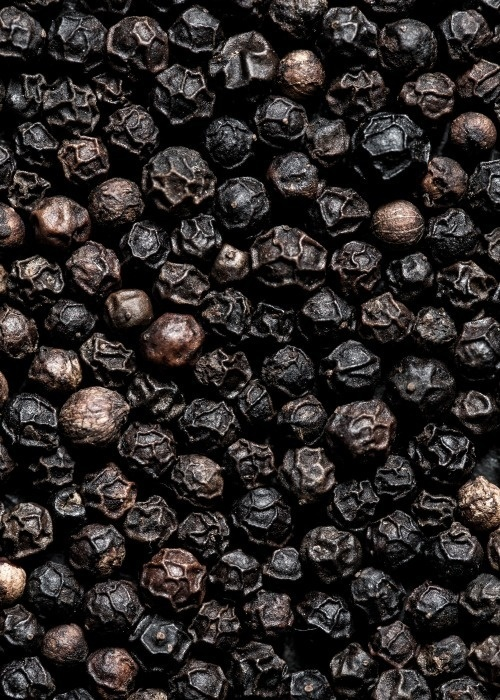 Black Pepper. Photo by Line Klein From Cereal Magazine Volume 2 #pepper