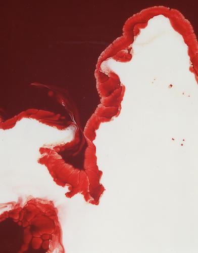.Alkama - Frédéric Fontenoy #blood #photography #art #milk #paper