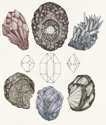 Graphic BirdWatching #illustration #crystals