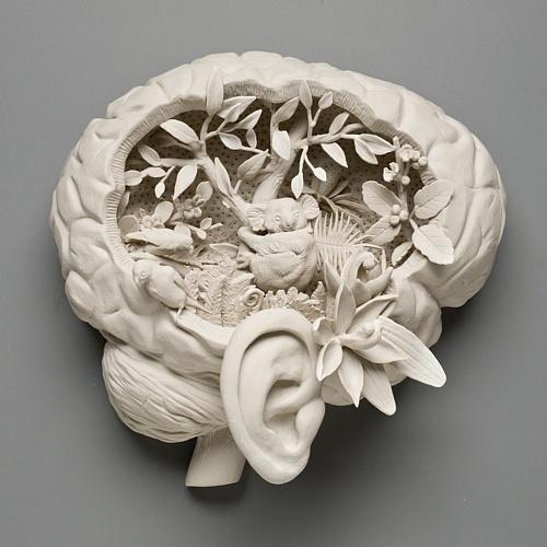 Kate MacDowell Bird Brain Sculpture #sculpture #art
