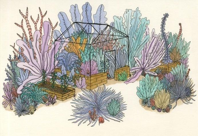 ebony-eden: Coral garden #garden #greenhouse #illustration #plants