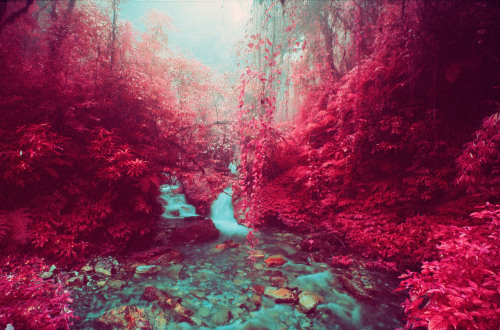 Sean Lynch | PICDIT #pink #photo #landscape #photography #art #surreal