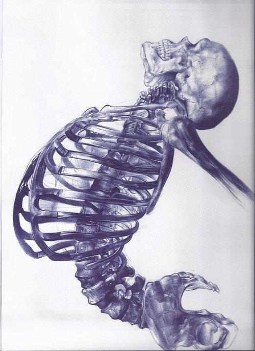 Scheletro umano by Andrea Schillaci. #indigo #skeleton