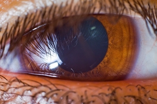 All sizes | just an eye | Flickr - Photo Sharing! #eye #lashes #pupil #macro