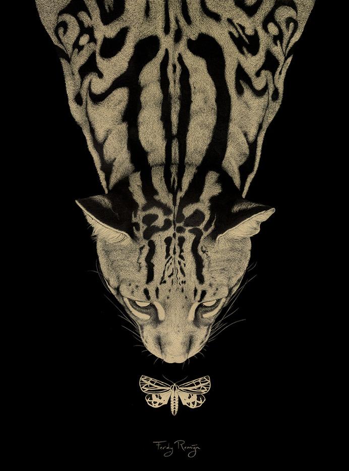 www.ferdyremijn.com #darkness #feline #moth #big #cat #illustration #beauty