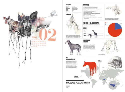 Behind the unknown Cryptozoology refers to the search for animals whose existence has not been proven. For this project I chose twelve anima #cryptozoology #okapi #infographics #realistic #design #graphic #illustration #animals