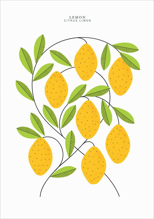 EtsyFinds_SarahAbbot_06 #lemon #illustration
