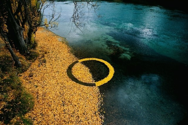 Circular Installations in Nature – Fubiz™ #nature