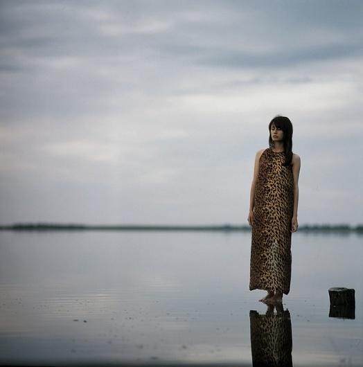 Photography by Moonshine I Art Sponge #leopard #landscape #portrait #photography #lake #dress
