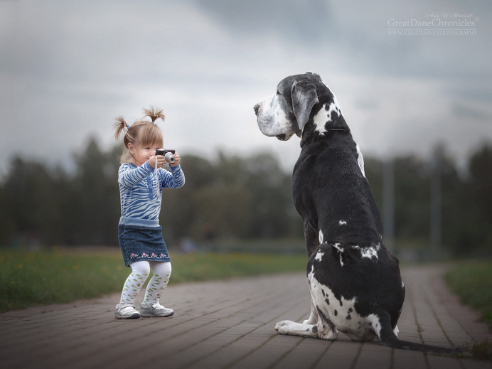 Little Kids And Their Big Dogs by Andy Seliverstoff
