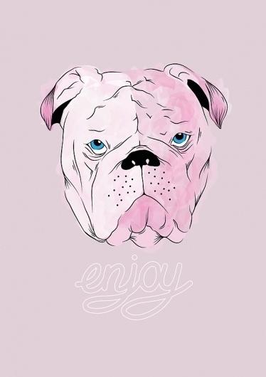 Enjoy on the Behance Network #pitbull #jones #typography #enjoy #illustration #chelsea #dog
