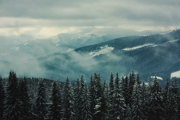 Tumblr #clouds #monotone #cold #landscape #photography #gray #trees #winder