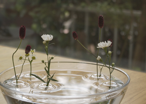 """CJWHO ™ (""""Floating Vase / RIPPLE #creative #amazing #vase #design #floating #ripple #clever"""