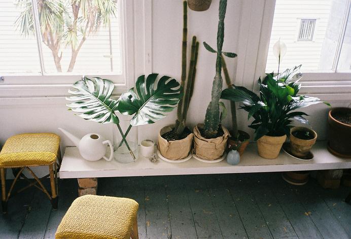 The Everyday #interior #apartment #design