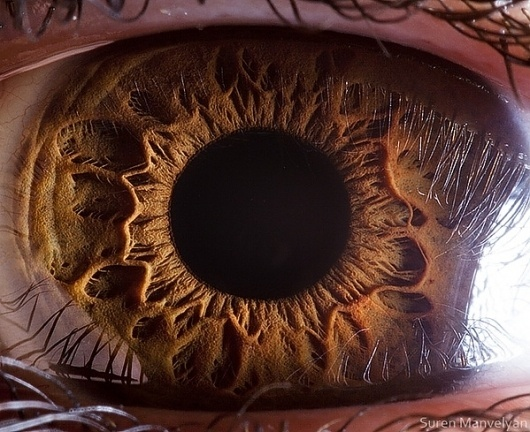 Your beautiful eyes on Photography Served #eye #photography