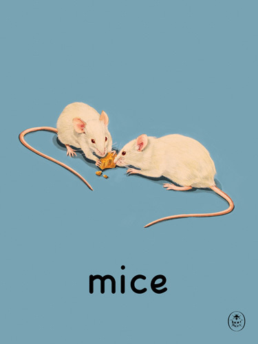 mice Art Print by Ladybird Books Easyart.com #print #design #retro #artprints #vintage #art #bookcover