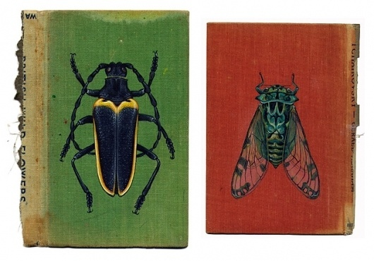 Colossal | An art and design blog. | Page 8 #rose #bugs #book #cover #sanderson