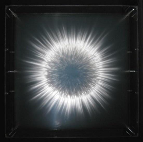 xia xiaowan9 #glass
