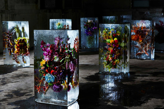 "Azuma Makoto Sets Plants in Inorganic Space in ""Iced Flowers"" #azuma #melt #makoto #inorganic #iced #art #flowers"