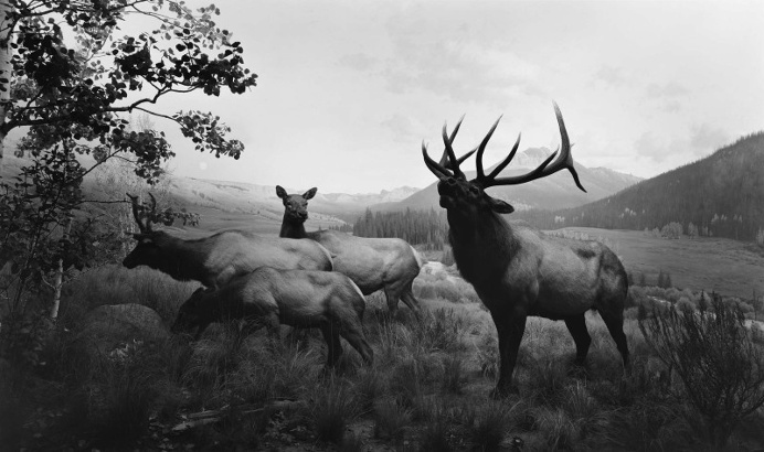 Black and White Photography by Hiroshi Sugimoto