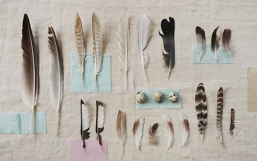 Things Organized Neatly #order