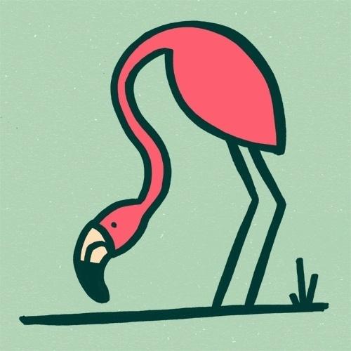 The Birds & The Birds — #5 Flamingo