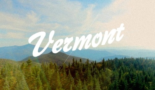 Slice Guy Life #lettering #photo #over #vermont #cursive #type #typography