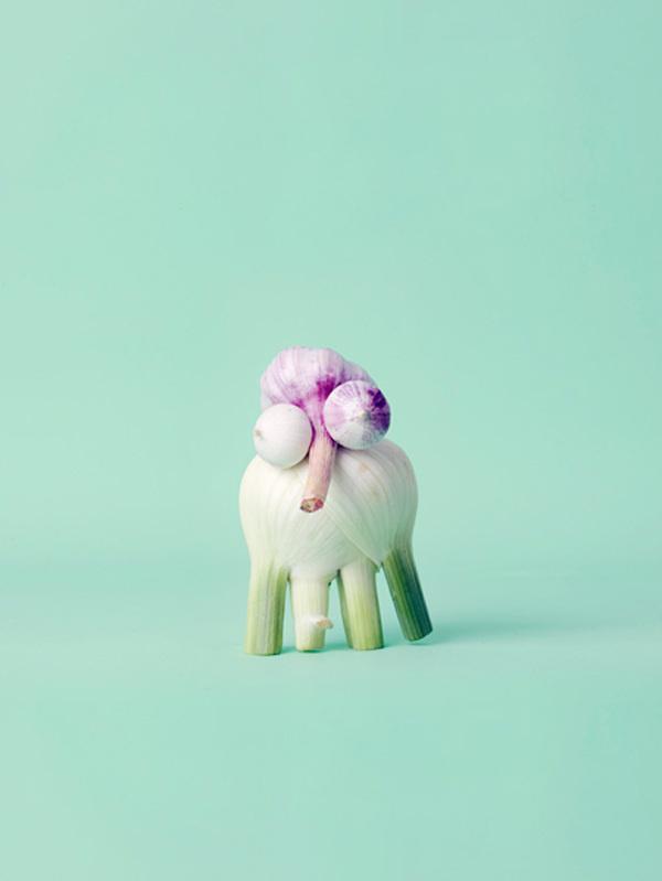 Mr Shy by Carl Kleiner #background #colour