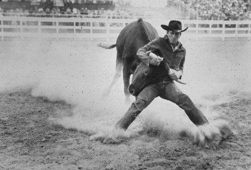 hellbentandwhiskeybound:Mean as hell. #wild #vs #controle #man #bull #cowboy