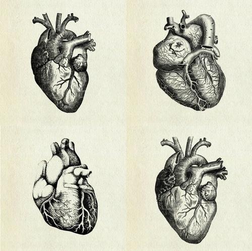coqueterías - (via loveyourchaos) #heart #illustration