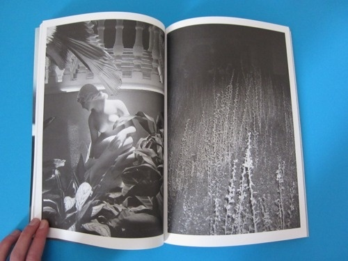 Hunter And Cook — Issue 10 « PICDIT #magazine #photography #printed #art
