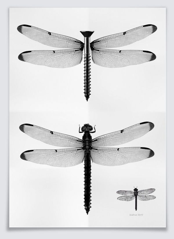 Illustrations - Isidro Ferrer Exhibit @Anatome Milano on Behance #dragon #white #photo #black #insect #fly #manipulation #and #collage