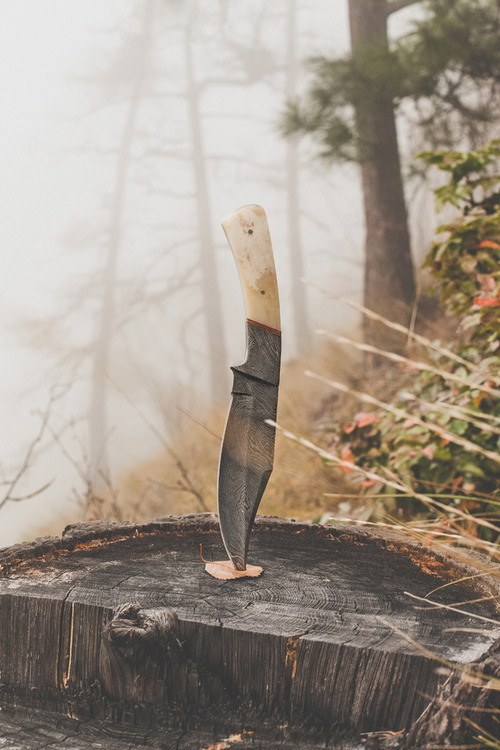 Likes | Tumblr #wood #forest #knife