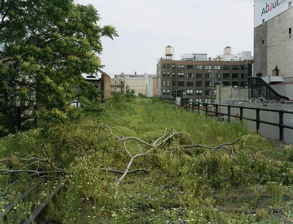 Joel Sternfeld | Friends of the High Line #sternfeld #line #joel #nature #york #nyc #high #new