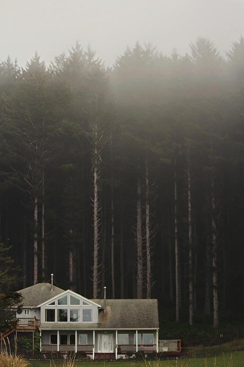 Schedvin #cabin #woods