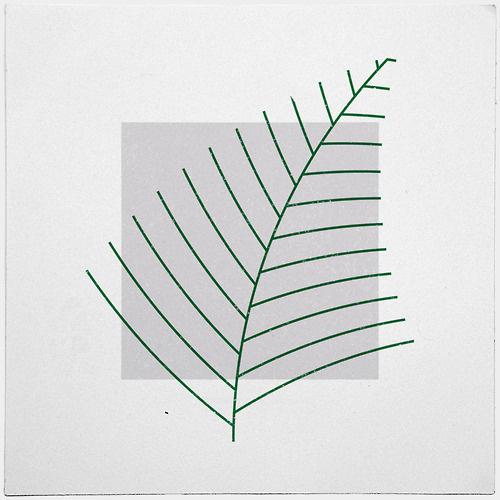 #290 Fern – A new minimal geometric composition each day