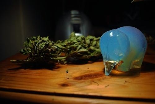 http://www.flickr.com/photos/wallb/ #marijuana #weed #elephant
