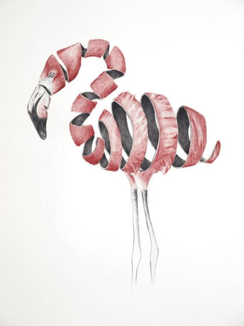 Jaume Montserrat Carvajal | PICDIT #pencil #animal #art #drawing