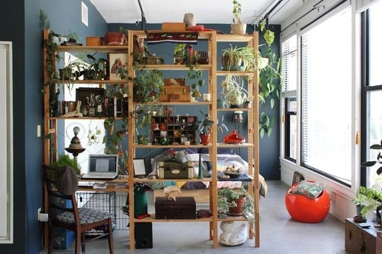 diy shelf with plants to separate bed. RDNY.com No Fee Rental Apartments in NYC. #plants