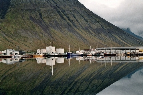 tumblr_kuwv11to7b1qzca43o1_500.jpg 500×333 pixels #nature #reflection #iceland #green