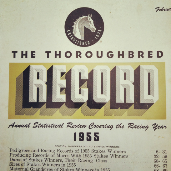 Record #horse #dropshadow #yellow #circle #typography
