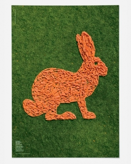 Magpie Studio #carrot #bunny #orange #poster #rabbit #green