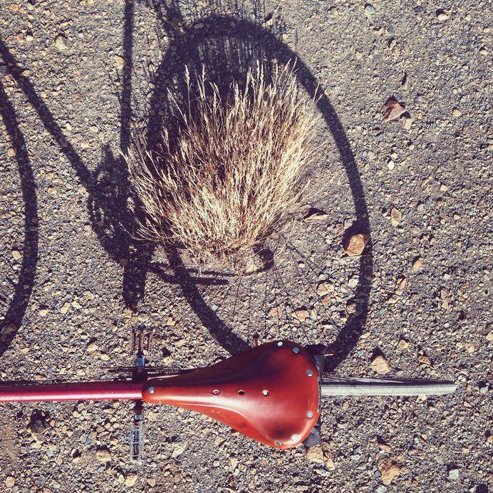 Bike casting shadows #bike #ride #sunny #summer #brooks #enjoyeverymile #vscocam #vsco #iphone