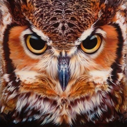 METROPLASTIQUE imagined by SupaKitch & Koralie #birds