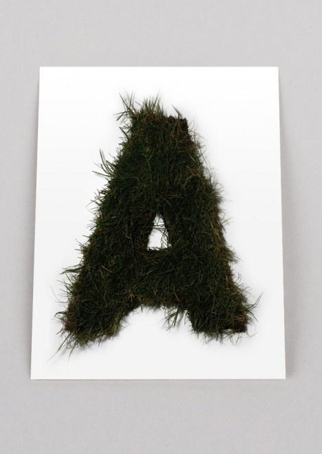 Autobahn grass typo #lettering #typo