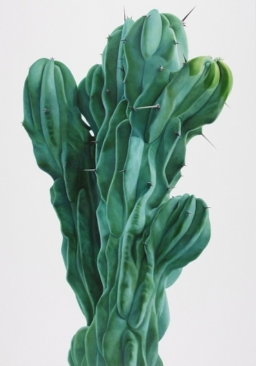 Kwang-ho Lee: Touch - Fontanel - Online Design Magazine #touch #cactus #painting